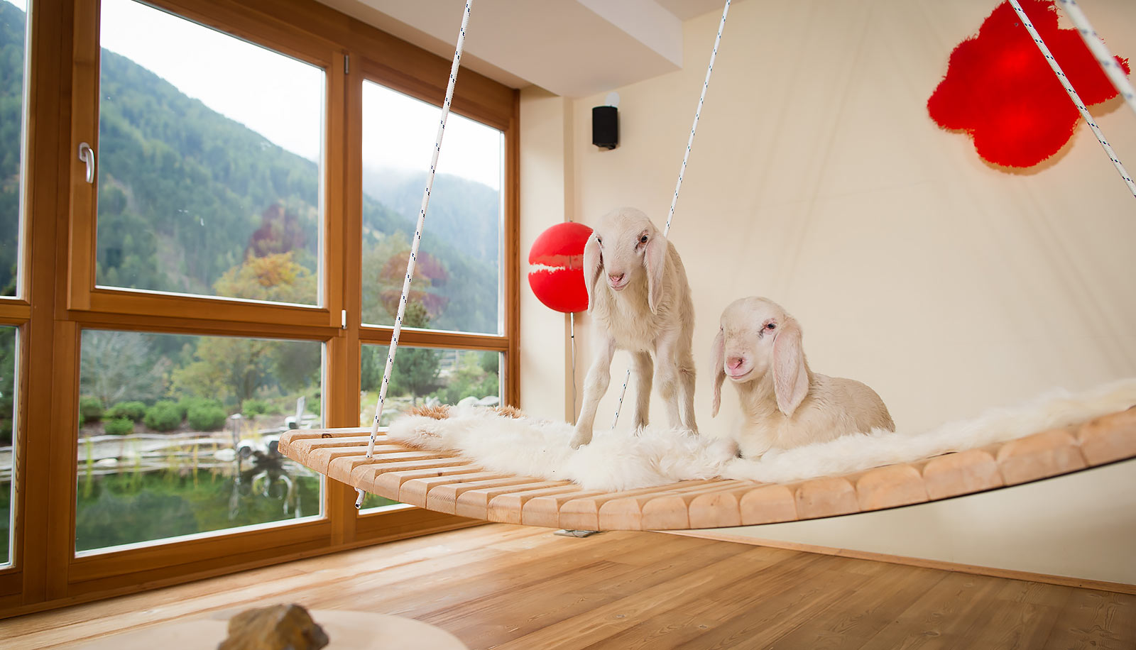 Two lambs on a swinging wooden bed with fur blanket in front of a window at Arosea Life Balance Hotel in Ultental-Val d'Ultimo